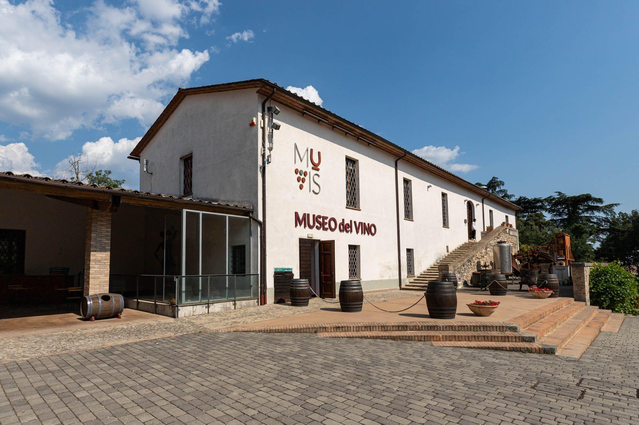 Donne in Vigna al MUVIS di Castiglione in Teverina